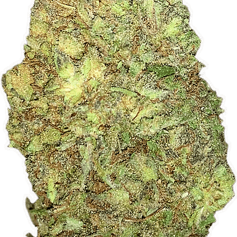 Illinois suver haze hemp flower