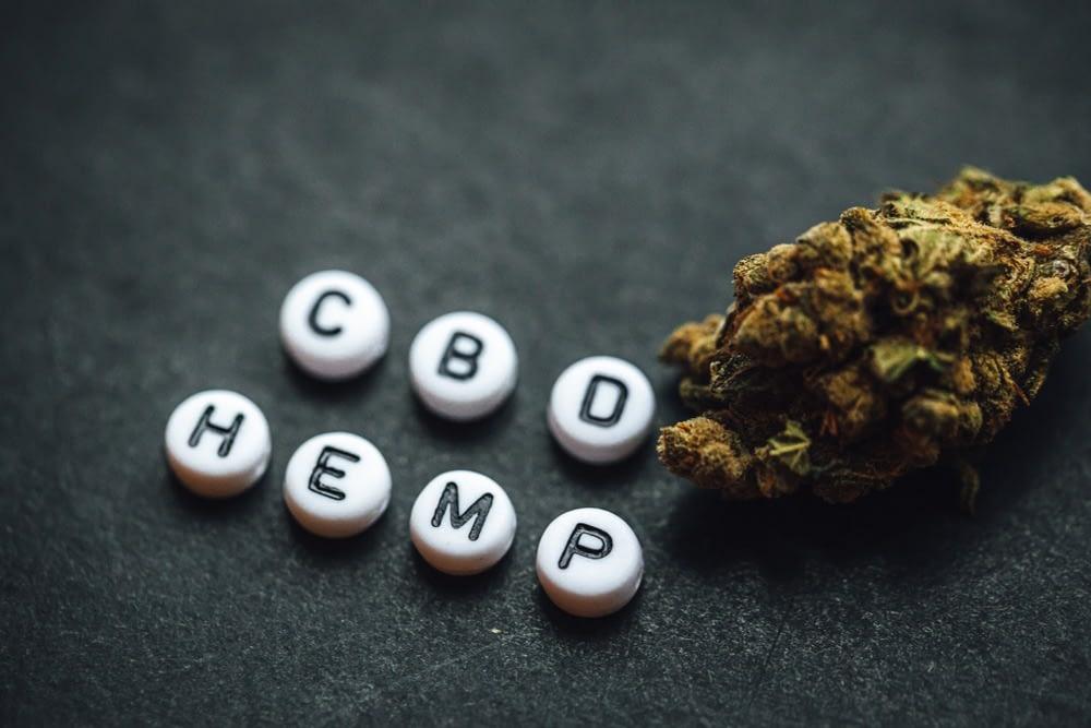 Use CBD hemp flower