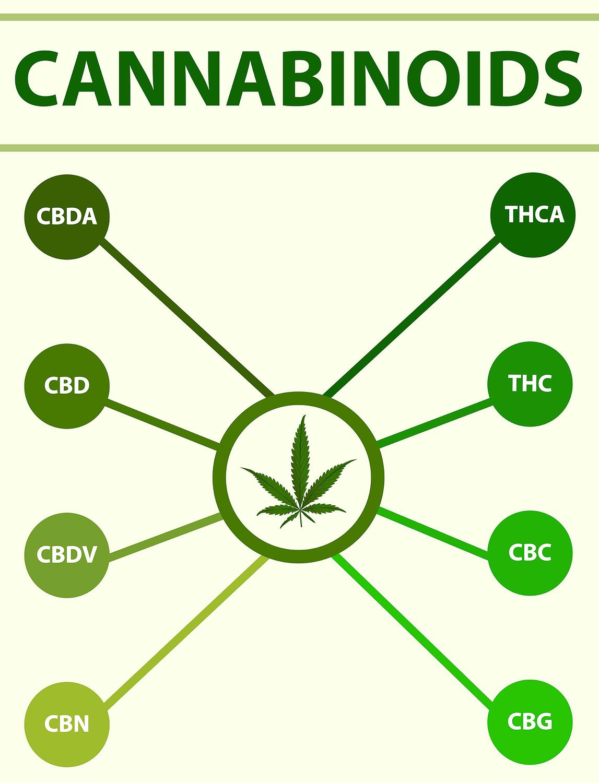 hemp flower cannabinoids