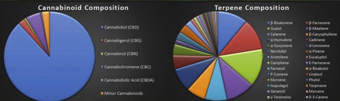 hemp flower terpene and cannabinoid effect