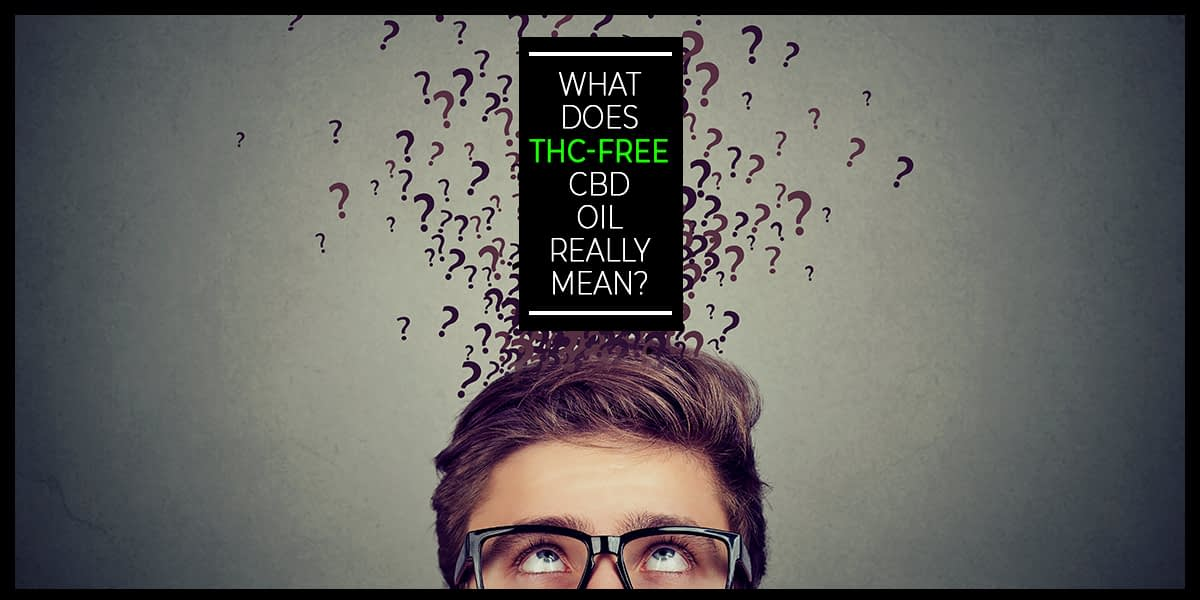 exploring CBD effectiveness