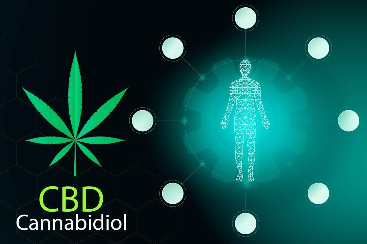 CBD flower targets endocannabinoid deficiency