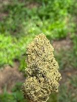 bubba kush d8 hemp flower