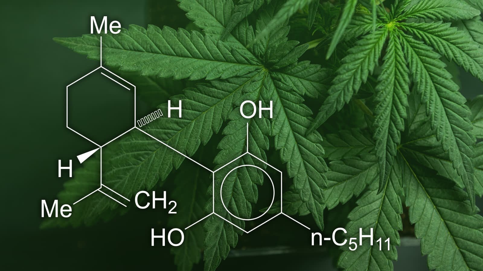 hemp flower cannabinoids