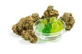 Green Gum hemp strain for the experience.