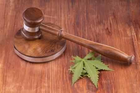 CBD hemp Laws
