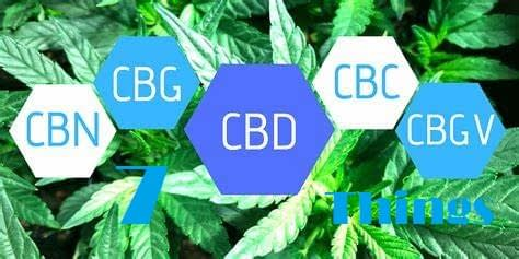 Things You do not know about cannabinoids