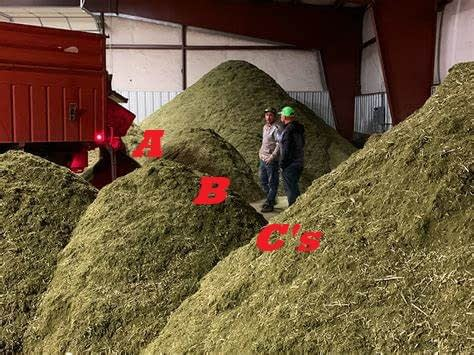 hemp biomass and uses