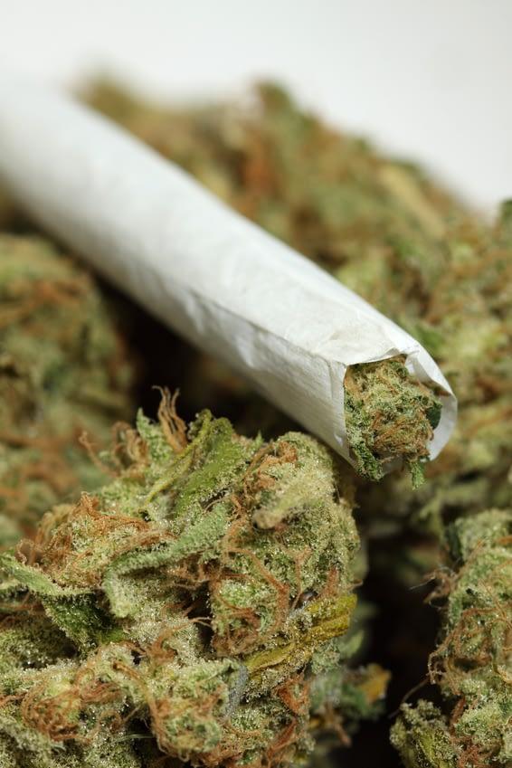 smoking CBD hemp flower