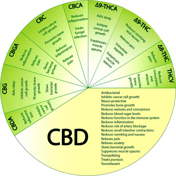 CBD hemp flower effects