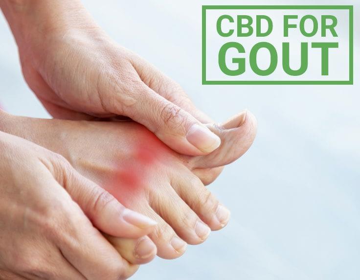 CBD deals with gout