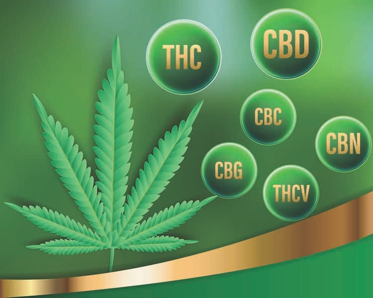 CBD hemp flower cannabinoids