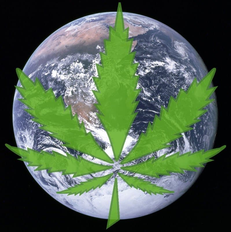 Could hemp save our earth?