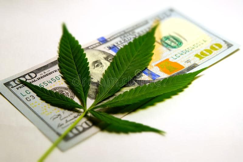 The Hemp crop and the almighty dollar