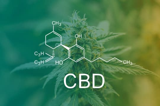 CBD flower therapy